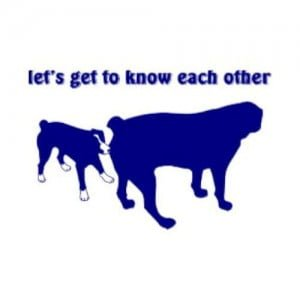 lets_get_to_know_each_other